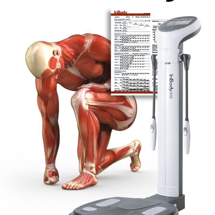 InBody, Analysera din kropp för bättre anpassning av träningen | Drivkraft Solna