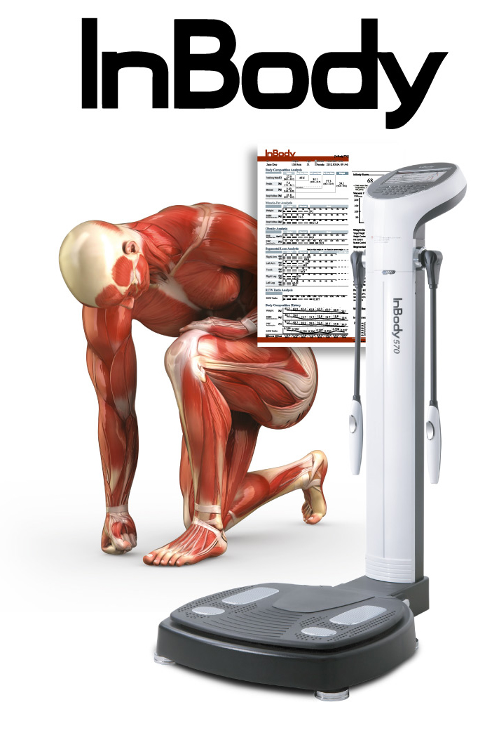 InBody - mätning av kroppssammansättning och fettmätning