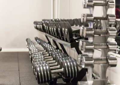Gymavdelning fria vikter